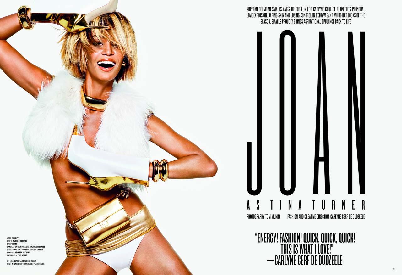 Tina Turner 2013 Vogue